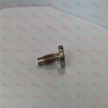 不锈钢螺钉-气动锚杆钻机配件